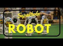 Cara Kerja Robot Sepakbola (Robot Soccer) Yang Keren Dan Gokil
